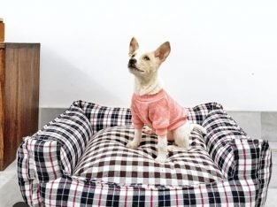 Bed Pets (beds for Dogs & Cats)